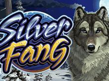 В виртуальном зале Вулкан аппарат Silver Fang